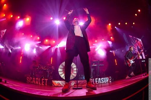 01-2015-00969 - Scarlet Pleasure (DK)