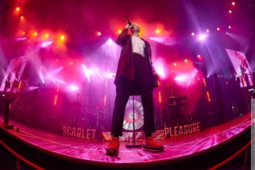 01-2015-00970 - Scarlet Pleasure (DK)