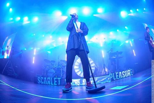 01-2015-00997 - Scarlet Pleasure (DK)