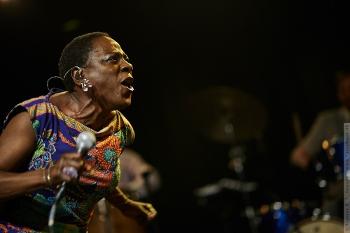 01-2014-02768 - Sharon Jones and The Dap-Kings (US)