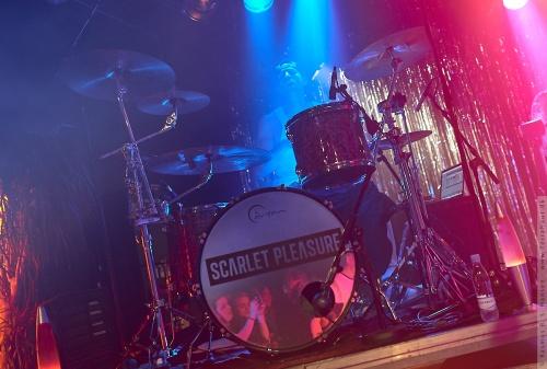 01-2014-06463 - Scarlet Pleasure (DK)