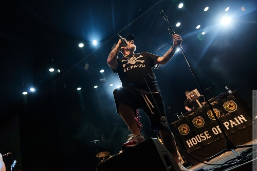 01-2017-02294 - House of Pain (US)