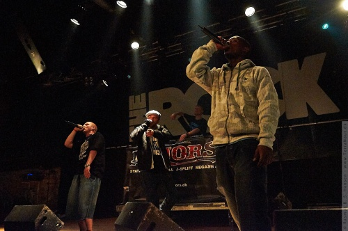 01-2008-01116 - Dansk Rap Pris
