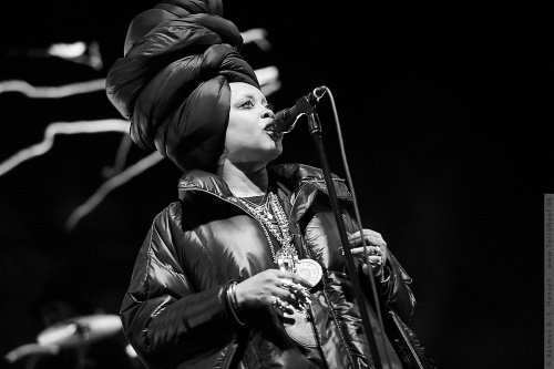 01-2017-02393 - Erykah Badu (US)