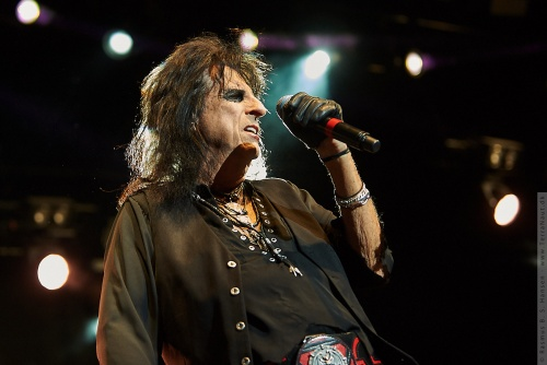 01-2018-02378 - The Hollywood Vampires (US)