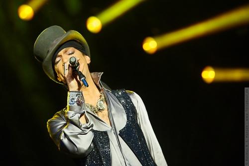 01-2011-07526 - Prince (US)