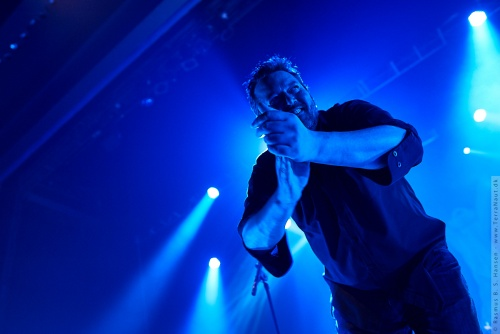 01-2011-12813 - Elbow (UK)