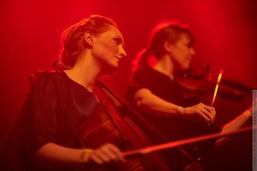 01-2011-14171 - Elou Elan (DK)