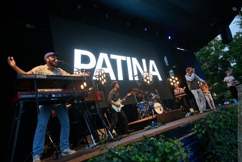 01-2020-00717 - Patina (DK)