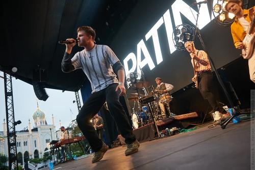 01-2020-00748 - Patina (DK)