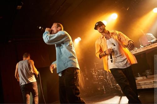 01-2012-11463 - Harms og Frisk (DK)
