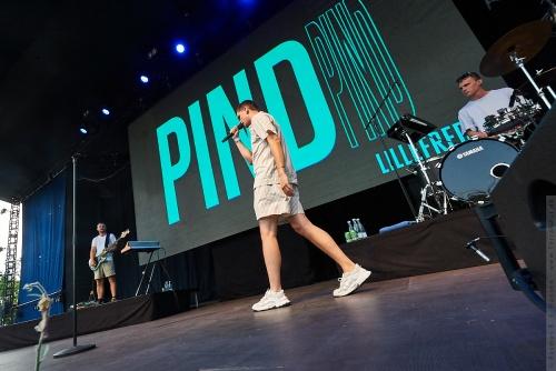 01-2021-00524 - Pind (DK)